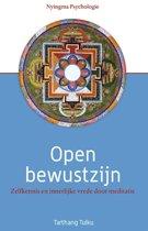 Nyingma psychologie - Open bewustzijn