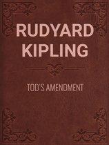 TOD'S AMENDMENT