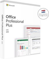 Microsoft Office 2019 - Professional Plus - Window