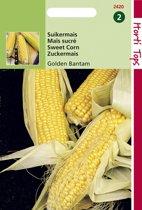 Hortitops Zaden - Suikermais Golden Bantam