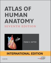 Atlas of Human Anatomy International Edition