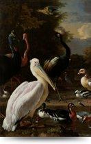 Vintage vogels 150x100 cm – Canvas Schilderij