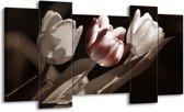 Canvas schilderij Tulp | Bruin, Grijs, Wit | 120x65 5Luik