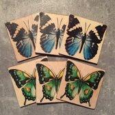 Onderzetters Vlinders groot. Set van 6. 10 x 10 cm.