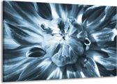 Schilderij | Canvas Schilderij Bloem | Blauw | 140x90cm 1Luik | Foto print op Canvas