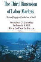 Third Dimension of Labor Markets