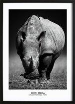 Rhino Poster (29,7x42cm) - Natuur - Poster - Print - Wallified