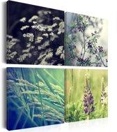 Schilderij - Magisch veld - Collage