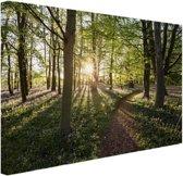FotoCadeau.nl - Een bospad op een zonnige dag Canvas 120x80 cm - Foto print op Canvas schilderij (Wanddecoratie)