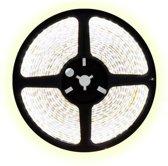 2,5 meter koud wit led strip - 60Leds/m - 12V