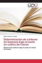 Determinacion de Carbono En Biomasa Bajo El Suelo En Cultivo de Cacao