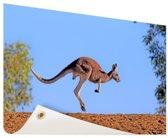 Rode kangoeroe Tuinposter 60x40 cm - klein - Tuindoek / Buitencanvas / Schilderijen voor buiten (tuin decoratie)