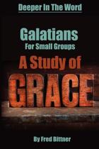 Galatians For Small Groups, A Study of Grace