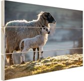 FotoCadeau.nl - Moeder met lam Hout 80x60 cm - Foto print op Hout (Wanddecoratie)