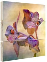 Twee lieveheersbeestjes op bloemen Hout 30x20 cm - Foto print op Hout (Wanddecoratie)