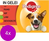 Pedigree Adult Favourites Multipack - Rundvlees en Gevogelte in gelei - 4 x (12 x 100 ) gr