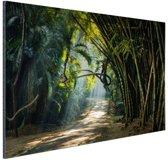 Rijen bamboe in Azie Aluminium 90x60 cm - Foto print op Aluminium (metaal wanddecoratie)