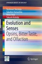 Evolution and Senses