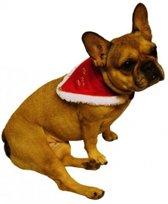 Kerstkleding - Kersthalsband voor hond of kat