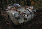 Fotobehang Red Forest|V8 - 368cm x 254cm|Premium Non-Woven Vlies 130gsm