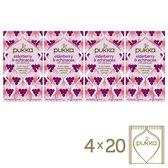 Pukka Elderberry & Echinacea Biologische thee - 4x20 theezakjes