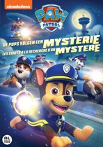 PAW PATROL V22: PUPS CHASE A MYSTERY(D/F