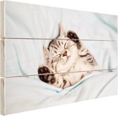 Slapend katje Hout 30x20 cm - Foto print op Hout (Wanddecoratie)