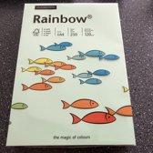 Rainbow gekleurd papier KL75 Medium Groen