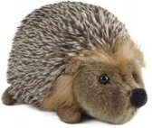 knuffeldier Hedgehog Medium SALE