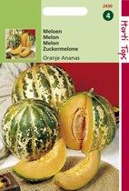 Hortitops Zaden - Meloenen Oranje Ananas