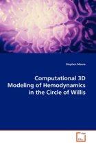 Computational 3D Modeling of Hemodynamics in the Circle of Willis