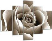 Glas schilderij Roos, Bloem | Sepia | 100x70cm 5Luik | Foto print op Glas |  F006721