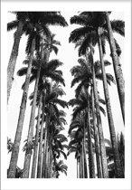 Palmtrees 2 (29,7x42cm) - Tropisch - Poster - Print - Wallified