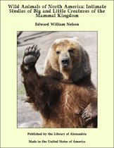 Wild Animals of North America: Intimate Studies of Big and Little Creatures of the Mammal Kingdom