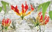 Fotobehang Bloemen | Grijs, Groen | 312x219cm