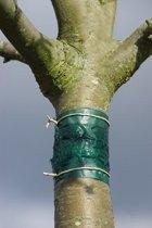 Nortene Insectenkleefband 1,5 m geschikt voor meerdere bomen door op maat te knippen.