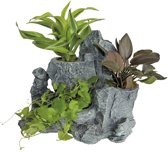 Superfish Scapers Rock 12 Planty 24x14x19 cm Grijs