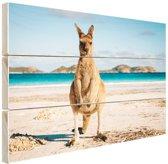 FotoCadeau.nl - Kangoeroe op het strand Australie Hout 80x60 cm - Foto print op Hout (Wanddecoratie)