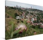 De natuur van Johannesburg in Zuid-Afrika Canvas 120x80 cm - Foto print op Canvas schilderij (Wanddecoratie woonkamer / slaapkamer)