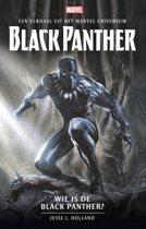 Wie is de Black Panther?