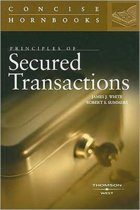 Principles of Secured Transactions