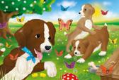 Puppies playing, 60 pcs - Kinderpuzzels