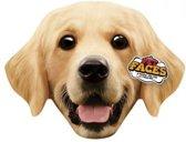 Pet Faces - Golden retriever