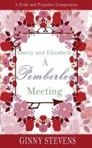 Darcy and Elizabeth: A Pemberley Meeting