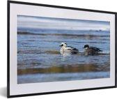 Foto in lijst - Twee nonnetjes in het water fotolijst zwart met witte passe-partout 60x40 cm - Poster in lijst (Wanddecoratie woonkamer / slaapkamer)