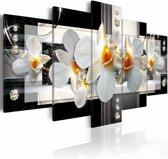 Schilderij - Zonnige Orchidee, Zwart/Wit, 2 Maten, 5luik