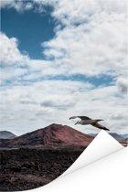 Zeemeeuw vliegt over het Nationaal park Timanfaya op Lanzarote Poster 120x180 cm - Foto print op Poster (wanddecoratie woonkamer / slaapkamer) XXL / Groot formaat!