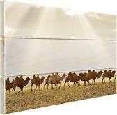 Een groep kamelen bij zonsondergang Hout 30x20 cm - klein - Foto print op Hout (Wanddecoratie)
