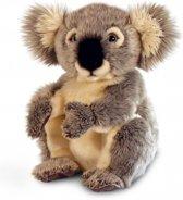 Pluche Koala knuffel 28 cm