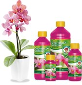 Wilma Orchidee voeding 1 ltr
